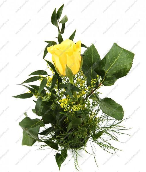 Trendafila - Faqe 13 0ff16477b382d00-gelbe-Rose