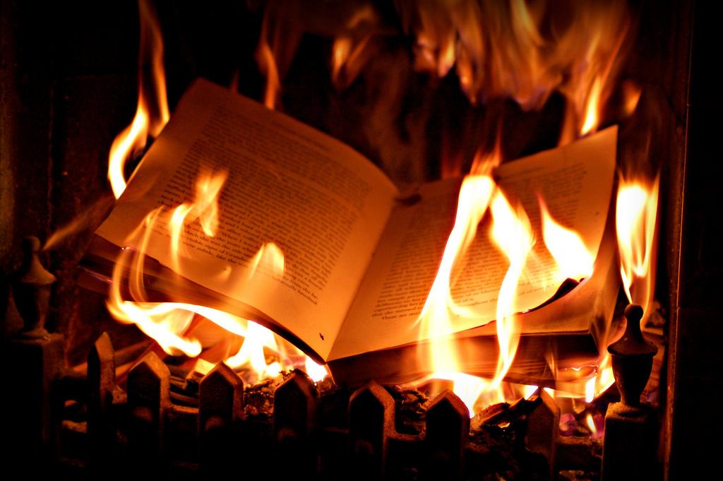 [FB solo] Fin d'une vie, commencement d'une autre. BurningBook