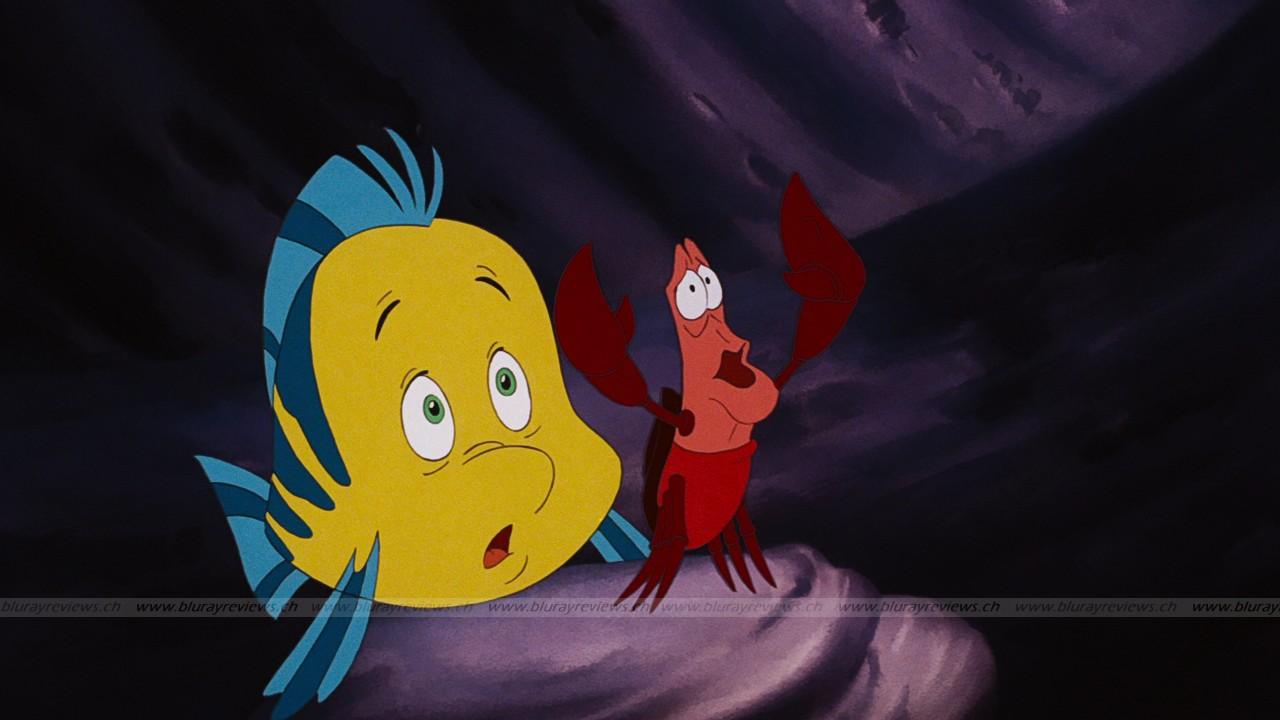 [BD + DVD] La Petite Sirène (25 Septembre 2013) - Page 40 Little-mermaid-the_10