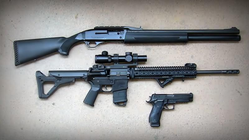L'arme d'épaule la plus polyvalente... - Page 7 3Gun_Guns
