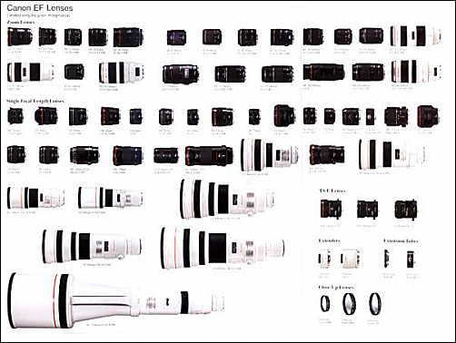 أفضل العدسات الموصى بها (لكاميرات350D و 20D من كانون) Lenses