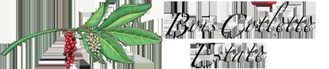 Đầu Tư Bất động sản Mỹ Dự Án Balmoral Tại Florida www.gbico.net Bc-logo-horizontal-1