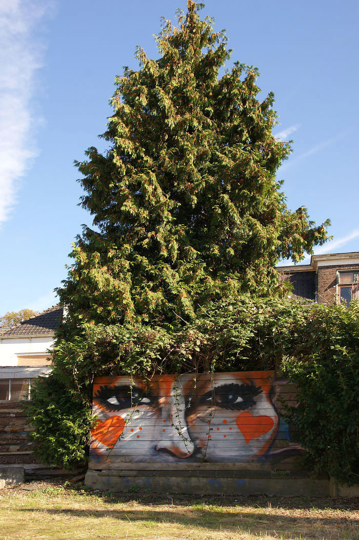 Street art Street-art-interacts-with-nature-22