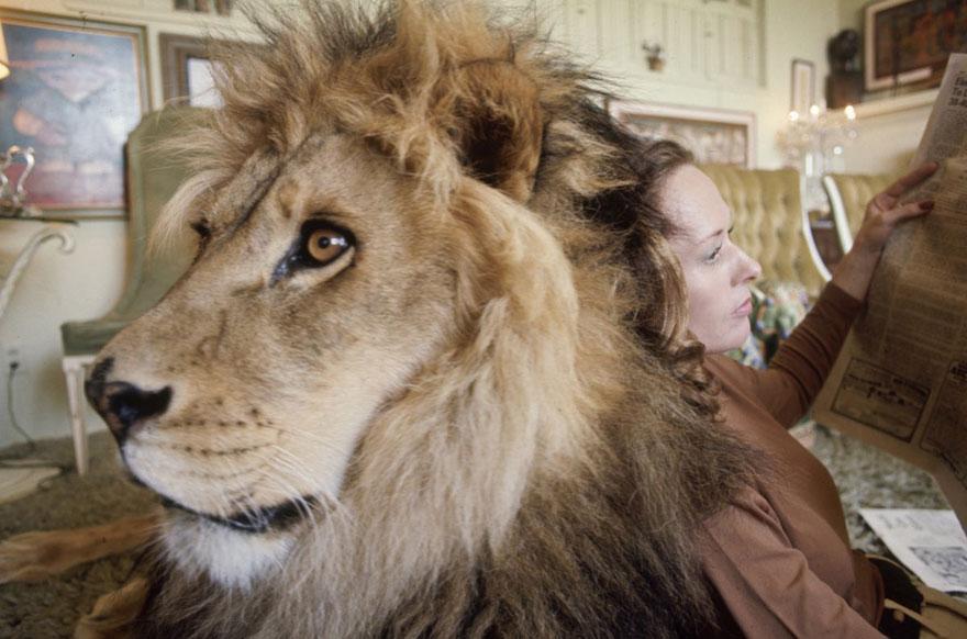 Et si au lieu d'un chat vous aviez un lion Pet-lion-neil-film-michael-rougier-8