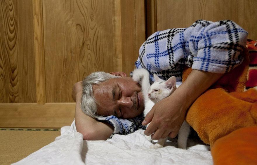 para - Qué hacer ante un caso de maltrato animal Guardian-fukushima-abandoned-animals-naoto-matsumura-11