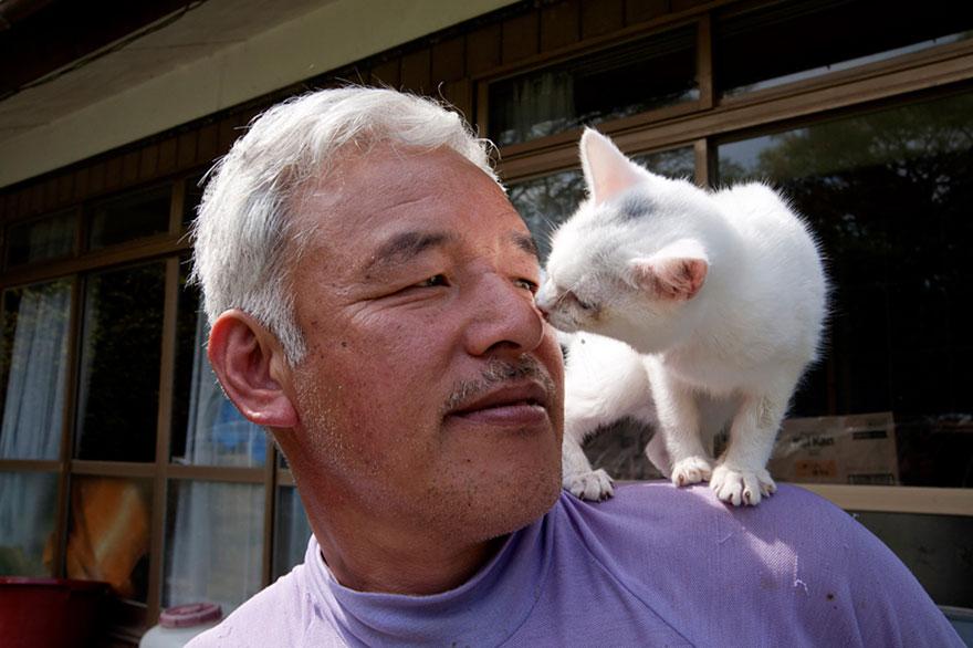 para - Qué hacer ante un caso de maltrato animal Guardian-fukushima-abandoned-animals-naoto-matsumura-14