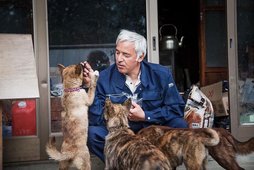 para - Qué hacer ante un caso de maltrato animal Guardian-fukushima-abandoned-animals-naoto-matsumura-15