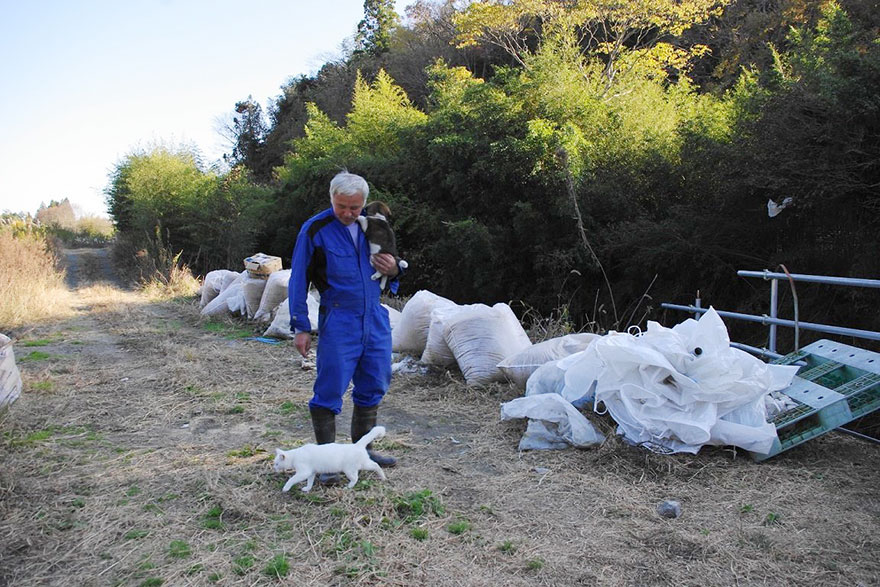 para - Qué hacer ante un caso de maltrato animal Guardian-fukushima-abandoned-animals-naoto-matsumura-3
