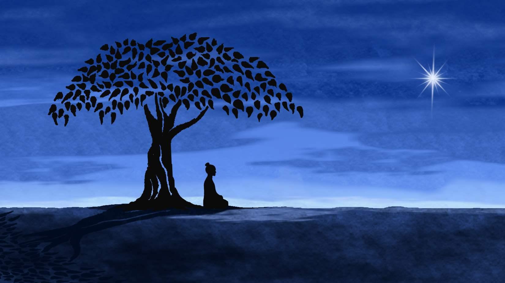 Cinq agrégats, cinq éléments, cinq perfections, cinq sagesses M%C3%A9diation-de-Bouddha