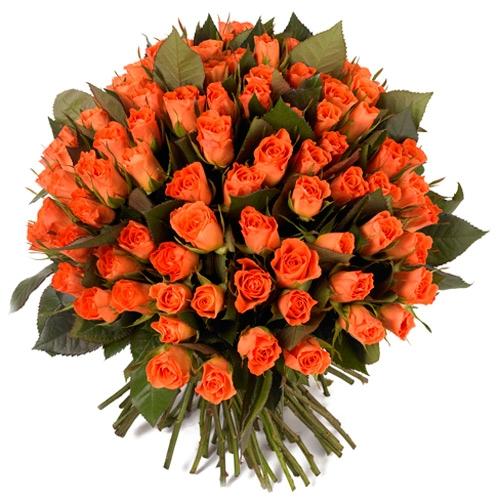 Pëshëndetje për vëllezërit dhe motrat nga Kosova... - Faqe 3 Bouquet-de-100-roses-oranges-2951-500