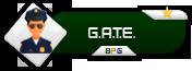 [8/7/2017] - Tag Kick no TeamSpeak - Local: [TeamSpeak] Gate