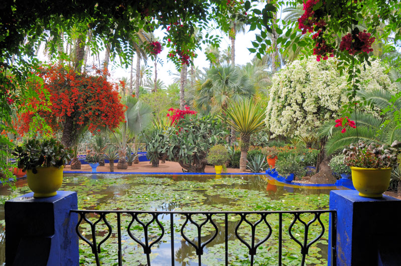 Vrtovi - Page 6 Basta-Majorelle-je-sva-u-plavoj-boji