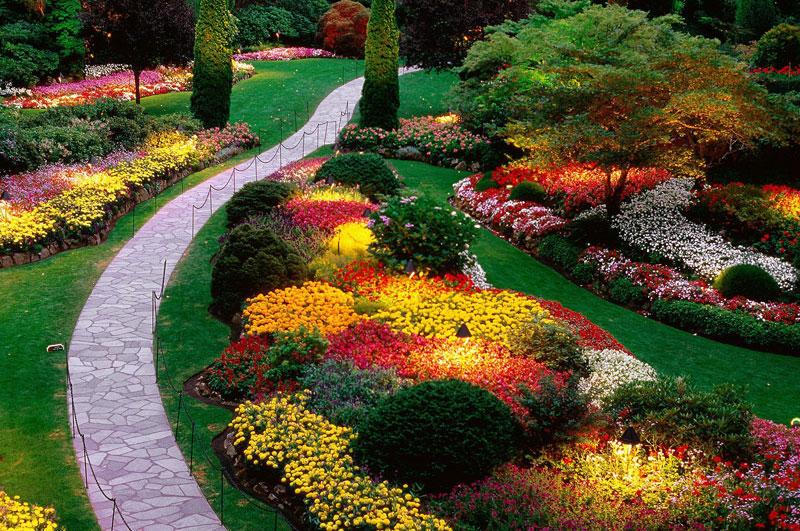 Vrtovi - Page 6 Rajska-basta-nalazi-se-u-Vankuver-Islandu