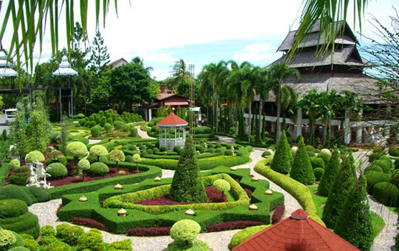 Vrtovi - Page 6 U-basti-se-nalazi-najbolji-izbor-orhideja-na-Tajlandu