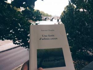 Rentrée littéraire 2015 !  - Page 2 Foret-arbres-creux-antoine-choplin-300x225