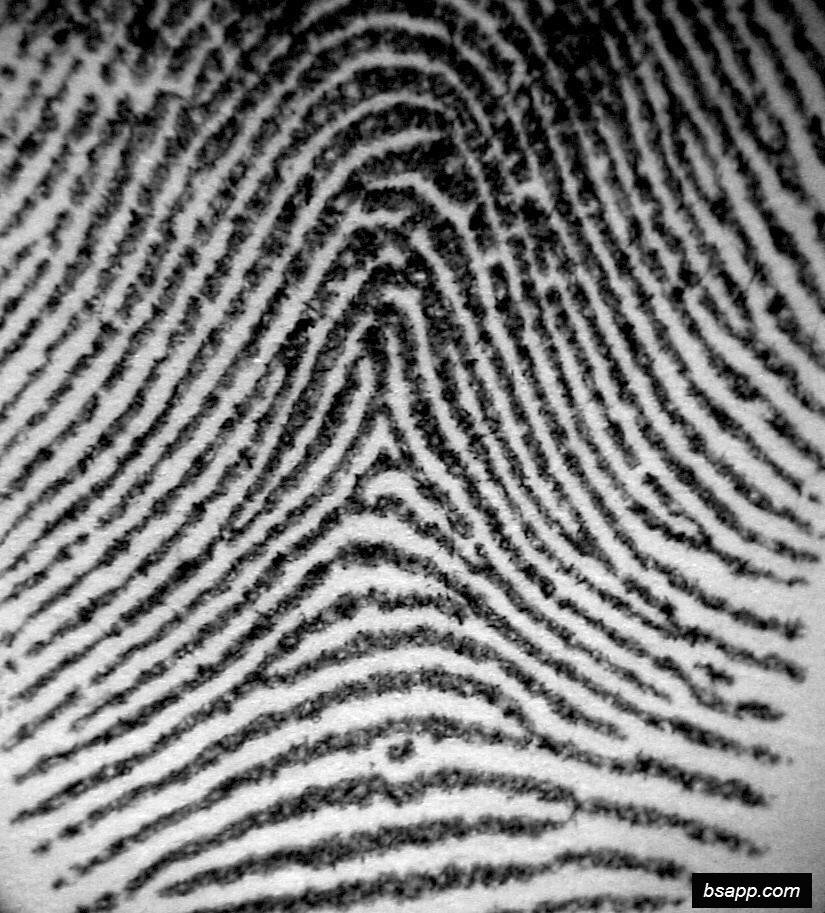 Psychological and diagnostic significance of finger prints DSC00809