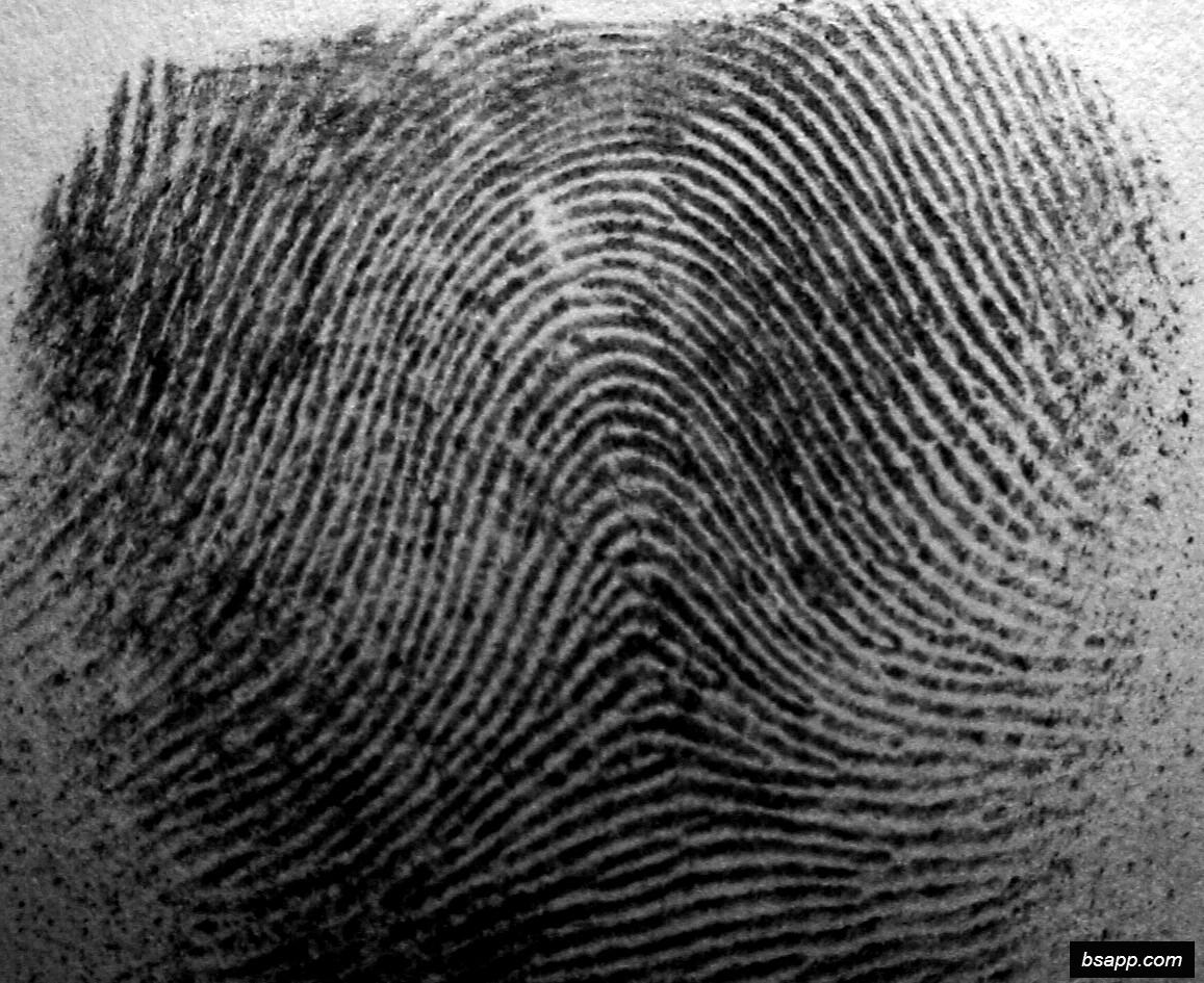 Psychological and diagnostic significance of finger prints DSC00942