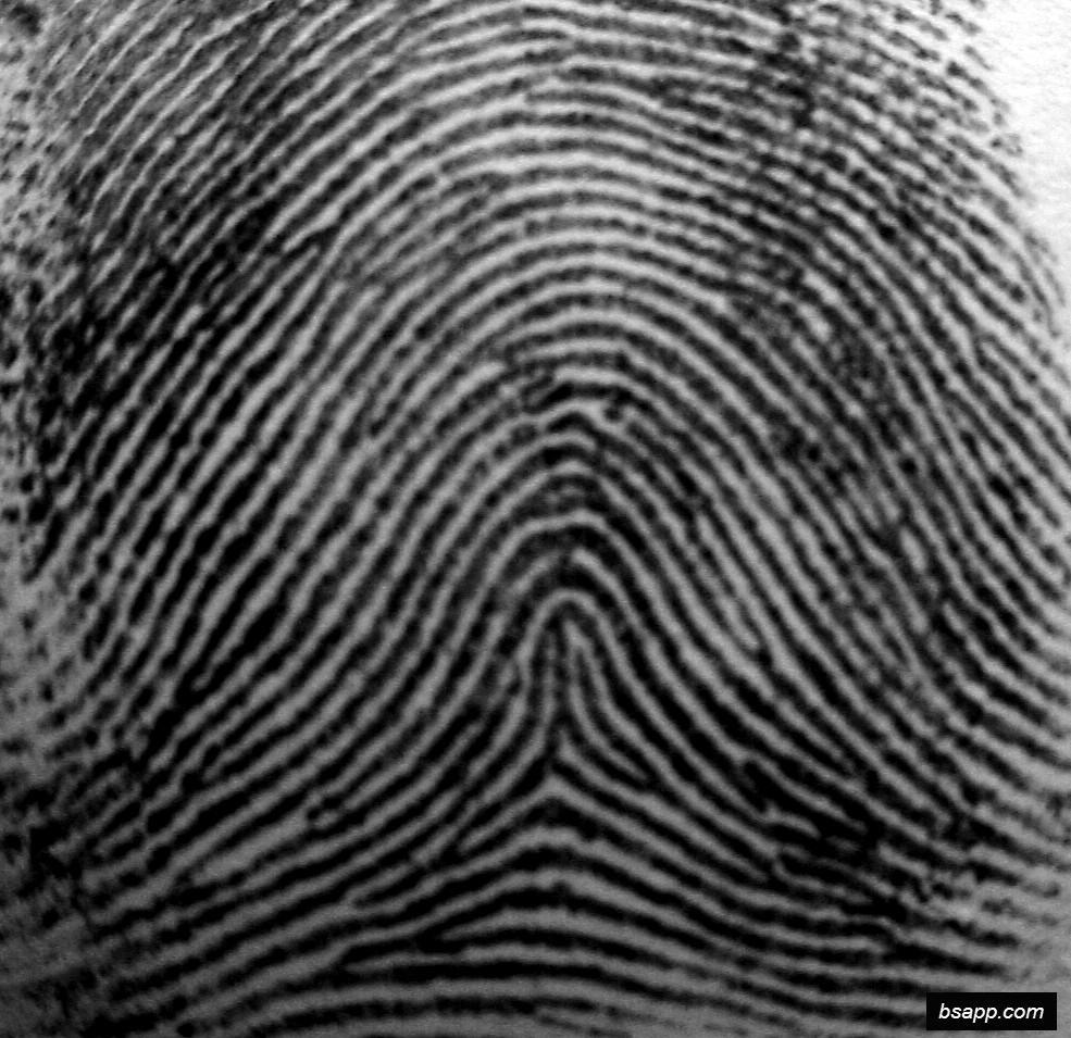 Psychological and diagnostic significance of finger prints DSC00974
