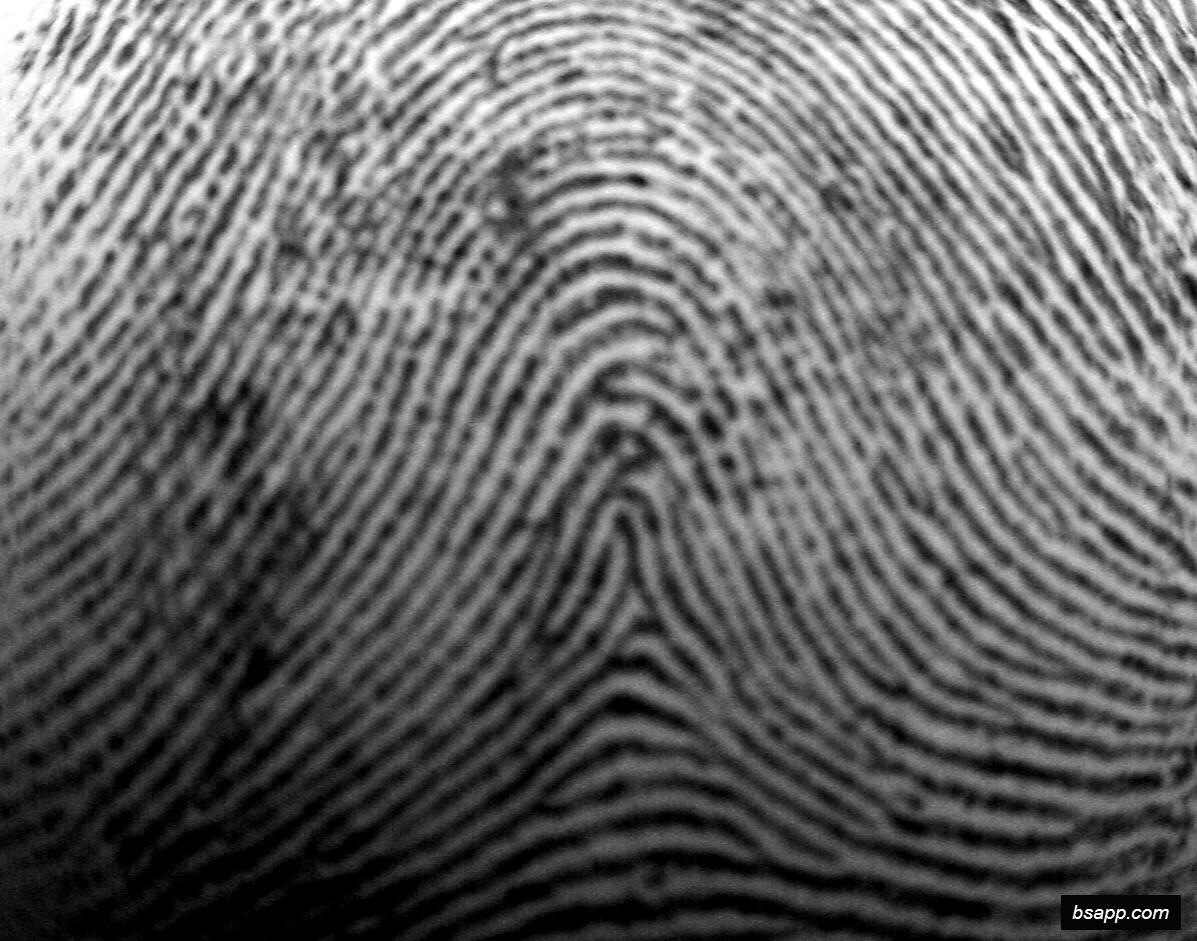 Psychological and diagnostic significance of finger prints DSC00976