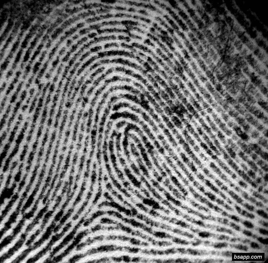 Psychological and diagnostic significance of finger prints DSC00804