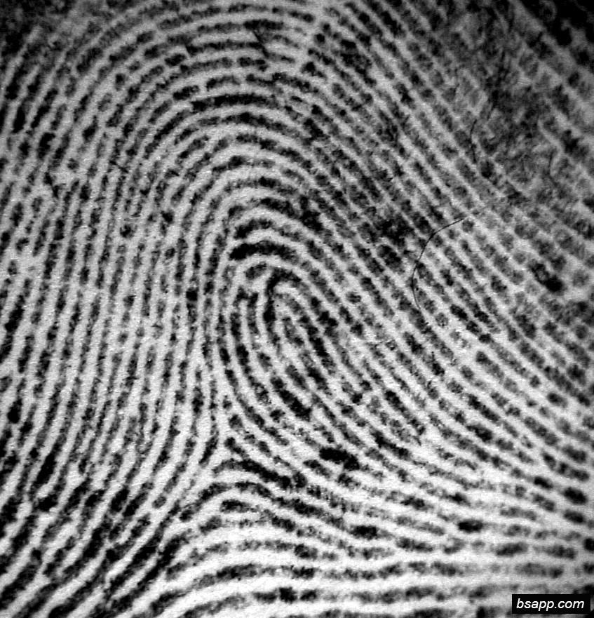 Psychological and diagnostic significance of finger prints DSC00807