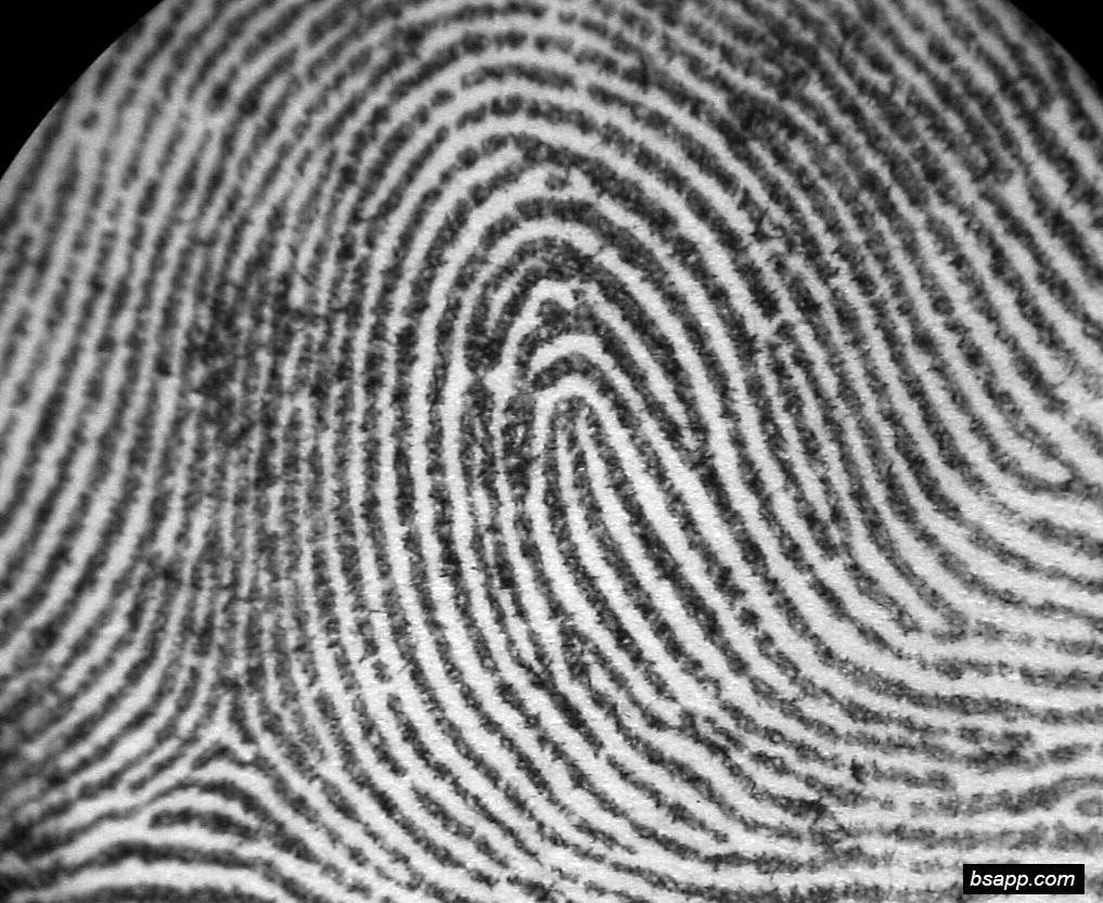 Psychological and diagnostic significance of finger prints DSC00818