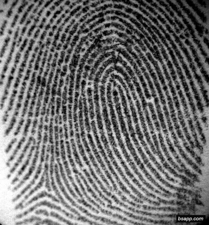 Psychological and diagnostic significance of finger prints DSC00820