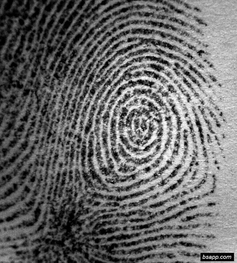 Psychological and diagnostic significance of finger prints DSC00836