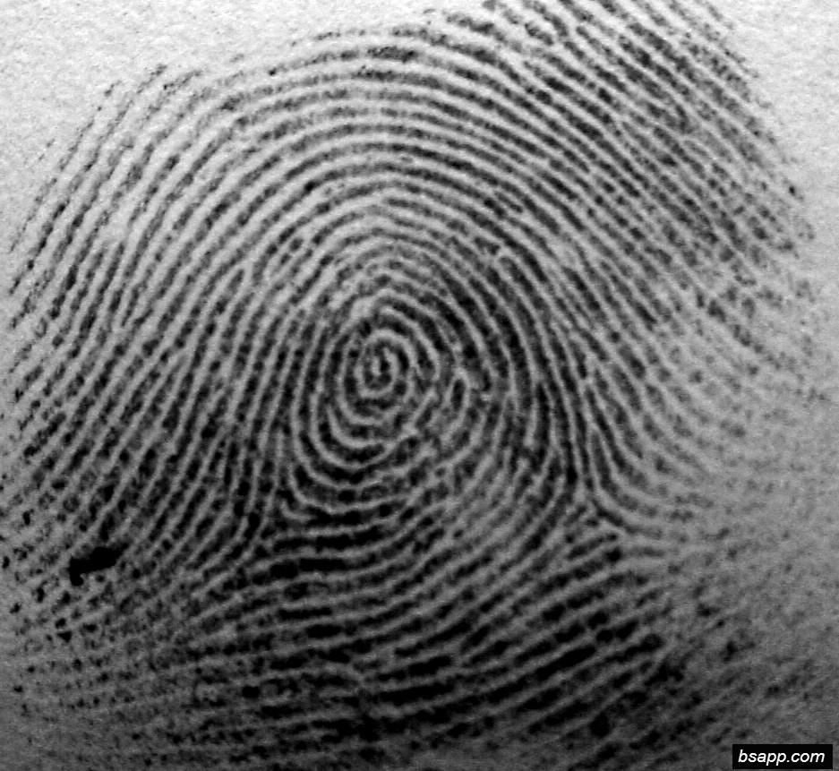 Psychological and diagnostic significance of finger prints DSC00944