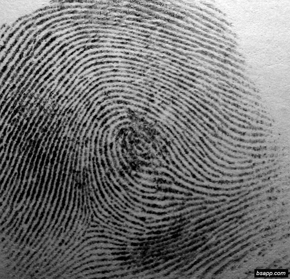 Psychological and diagnostic significance of finger prints DSC00967