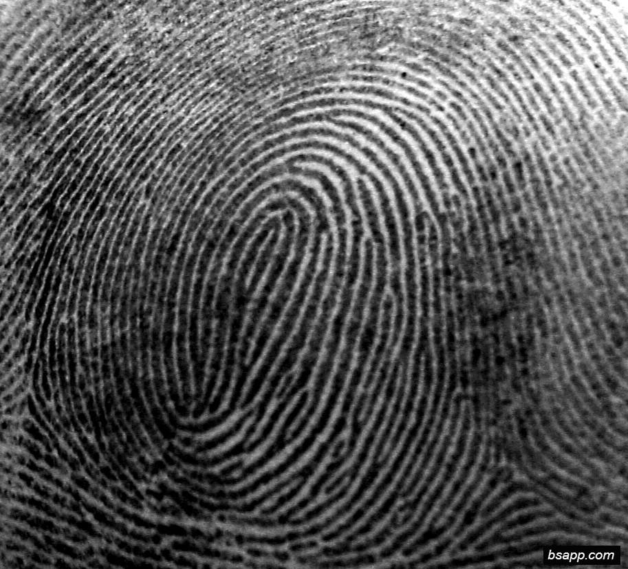 Psychological and diagnostic significance of finger prints DSC00867