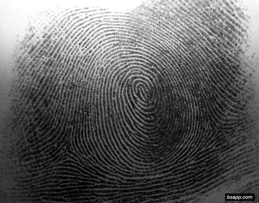 Psychological and diagnostic significance of finger prints DSC00843