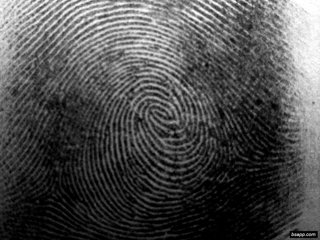 Psychological and diagnostic significance of finger prints DSC00882