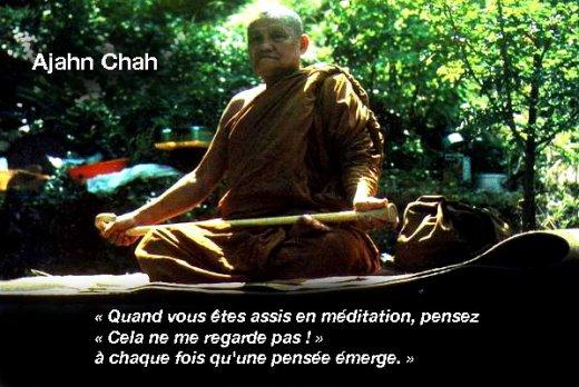 la meditation contribue à rendre l'homme heureux Ajahn-chah-520x348