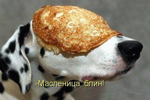 Веселье да упаду - 3 - Страница 25 1363123387_prikoly-na-maslenicu-6
