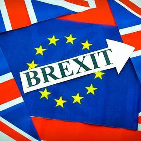 UK in a Permanent Vegetative State. Brexit