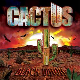 Cactus - Página 2 Holder1-360x270
