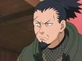 Les clans dans Naruto Nara_1