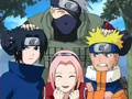 Les équipes Ninja Teamkakashi
