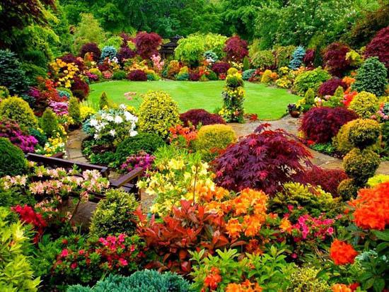 Lundi 10 avril Jardin-color%C3%A9