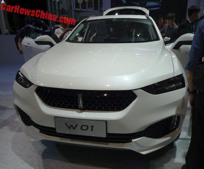 2016 - [CHINE] Guangzhou Auto Show Greatwall-wei-7a-660x549