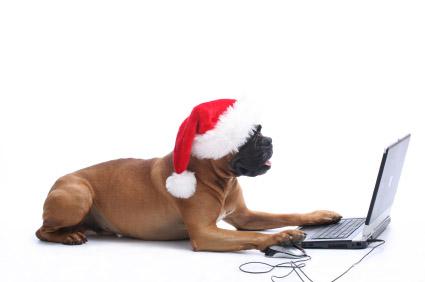 joyeux noel à tous Noel-21