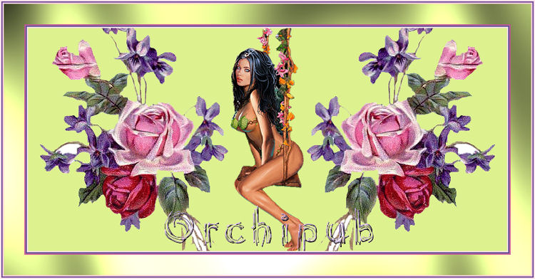 orchipub - Page 2 0703271031013754424831