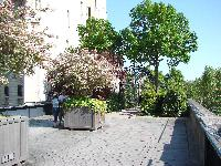 Petite balade bucolique à Paris découverte par Tarouilan Mini_0704220917172640501485