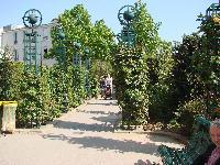 Petite balade bucolique à Paris découverte par Tarouilan Mini_0704220927122640501525