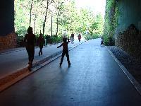 Petite balade bucolique à Paris découverte par Tarouilan Mini_0704221010342640501717