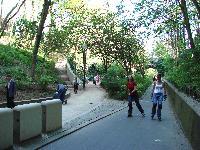 Petite balade bucolique à Paris découverte par Tarouilan Mini_0704221015302640501733