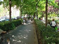 Petite balade bucolique à Paris découverte par Tarouilan Mini_0704221019452640501749