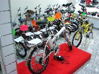 De bons vélos pliants chinois pour la première fois à Paris - Page 2 Mini_0706040644132640653993