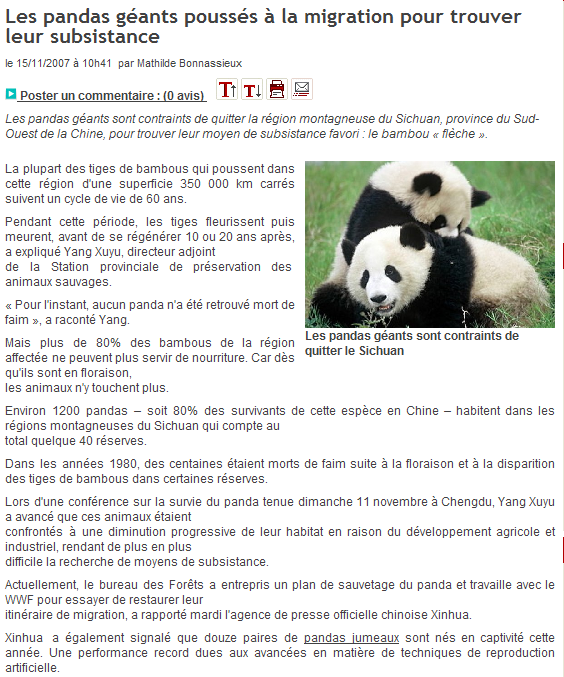Les pandas sauvages risquent la famine...... 071115113914142181417215